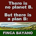 FINCA BAYANO