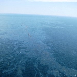 [Image: The-Gulf-Of-Mexico-Oil-Spill1-300x300.jpg]