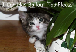 Bailout LOLCat