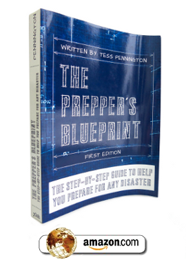 The Preppers Blueprint E